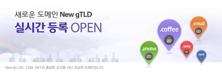 2014년 새로운 도메인 New gTLD 실시간등록 OPEN